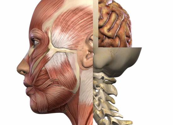 headaches-sinuses-neck-misalignment